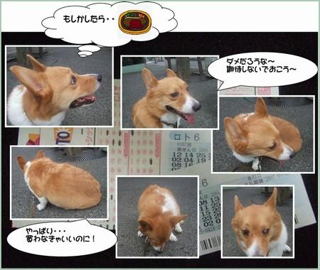 2006_0909dai