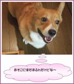 2006_0921003012