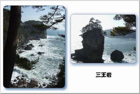 2007_030300781
