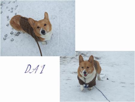 Yuki15_2