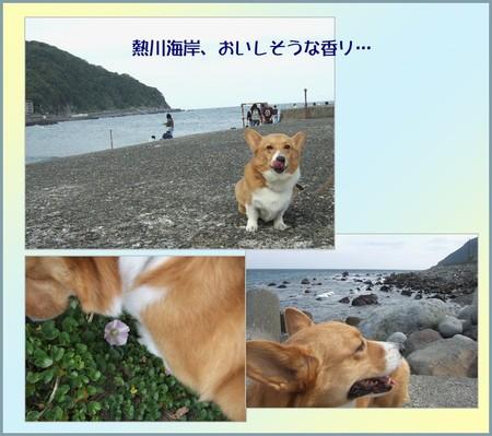 Atagawa