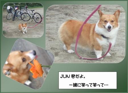 Junkun